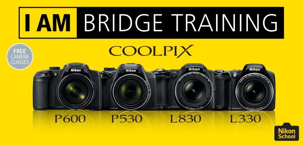 Bridge training_yellow_HIGHLIGHT