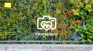 Heartography