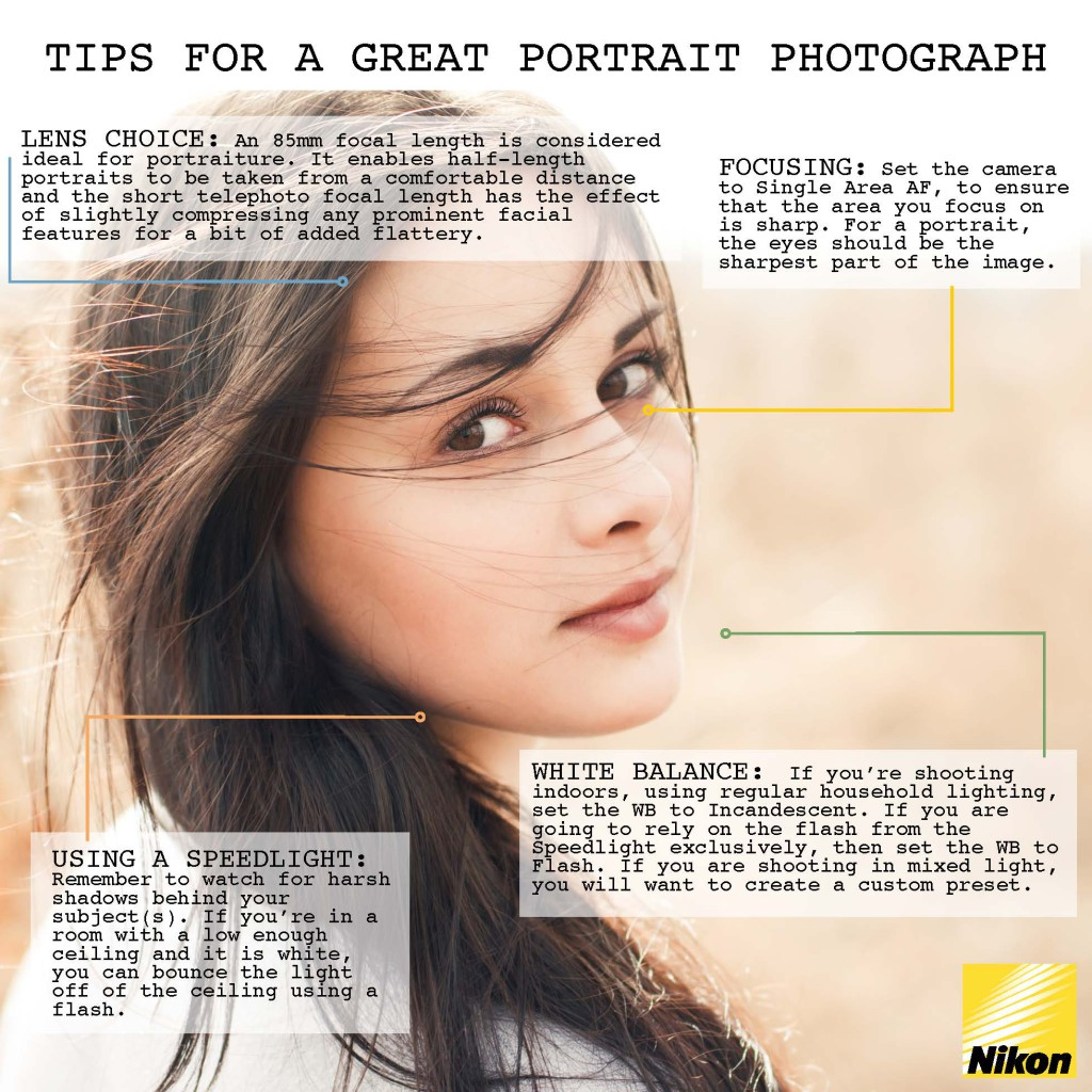 Portraiture infographic