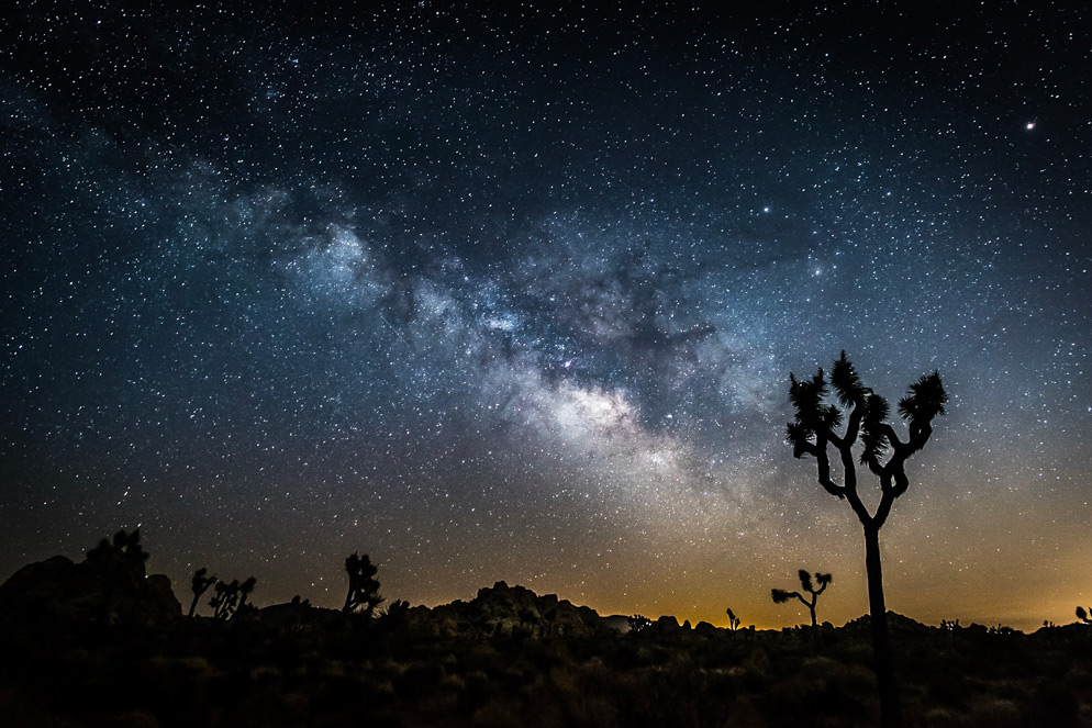 This image was taken in Joshua Tree National Park. Tony knew there would be light pollution and used it to make the foreground silhouetted trees stand out against the brighter color horizon. D810, AF-S NIKKOR 20mm f/1.8G ED, 20 seconds, f/2.8, ISO 1600, manual exposure, Matrix metering. Photo by: Tony Krup